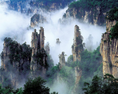 Amazing Pillars in Tianzi Mountains