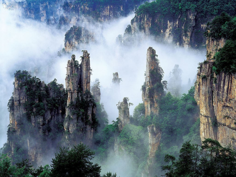 Amazing Pillars in Tianzi Mountains
