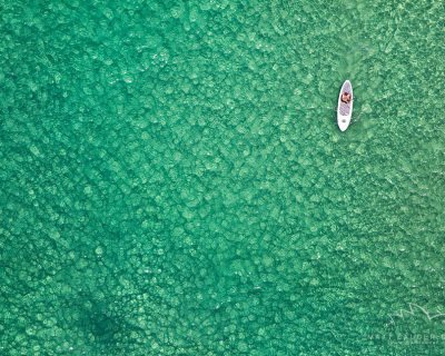 The Eternal Summer and Fun on Bondi Beach, Australia