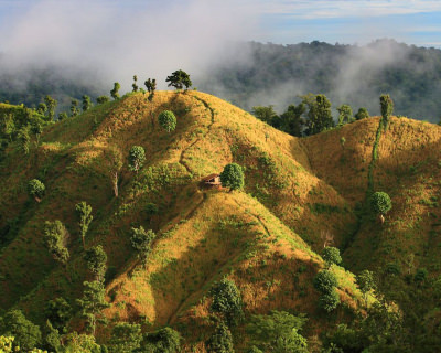 Go on a Pilgrimage to a Hill Town Bandarban in Bangladesh