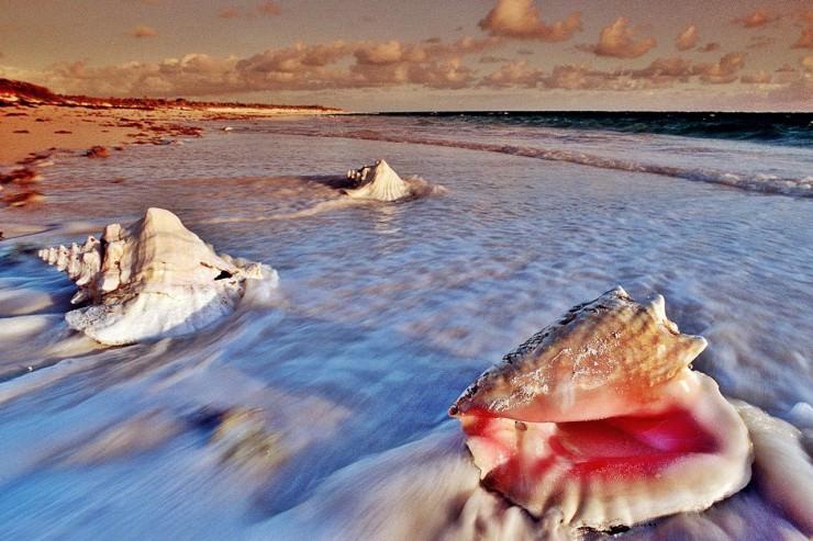Dutch Holiday Paradise in Caribbean – Wonderful Aruba