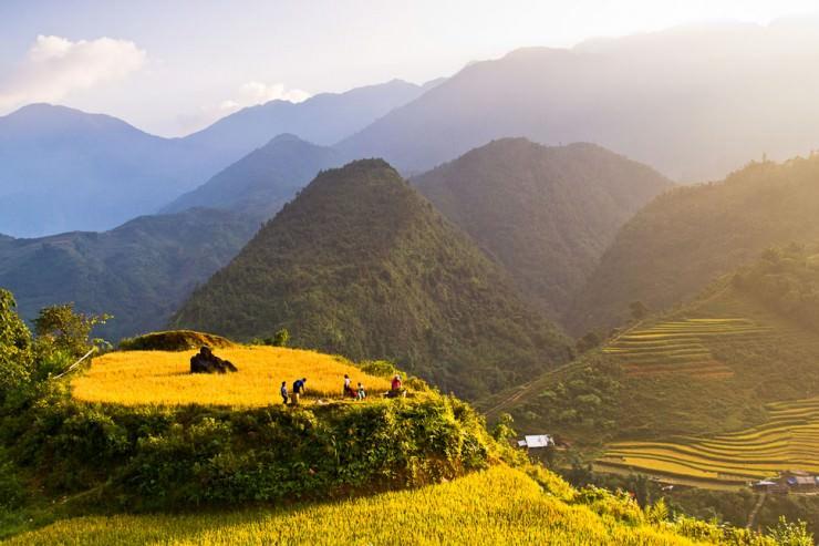 Impressive Terraced Rice Fields in Sa Pa, Vietnam
