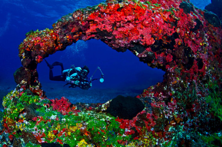 Top 10 Diving Sites-Brazil- Photo by Kadu Pinheiro