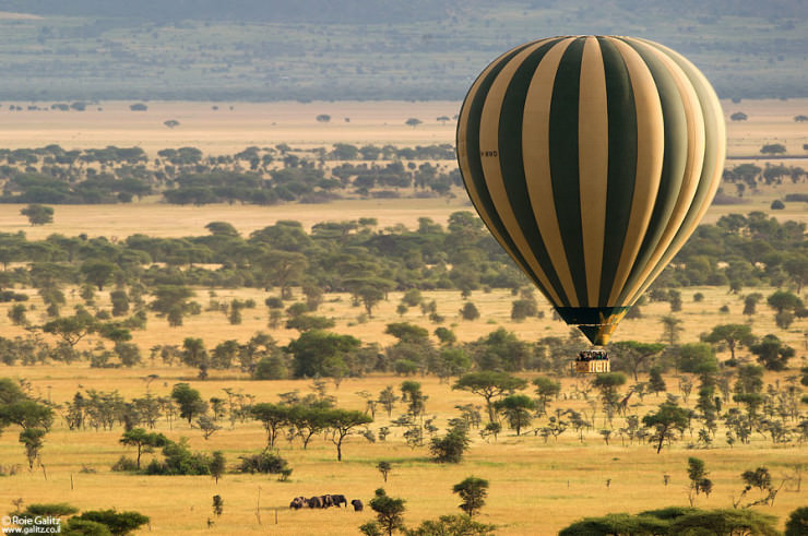 Top 10 Hot Air Ballooning-serengeti-Photo by Roie Galitz