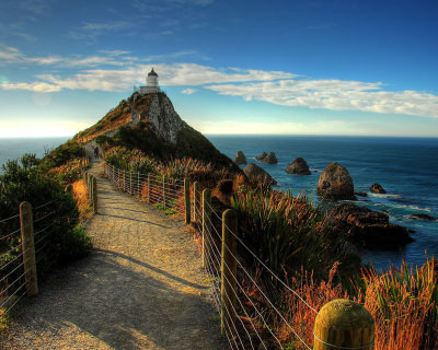 Nugget Point – the Iconic Site in Otago, New Zealand