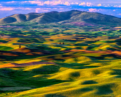 Picturesque Ancient Dunes in Palouse Region, USA