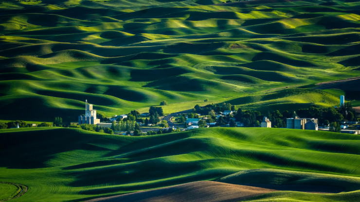 Palouse-Photo by Miles Smith