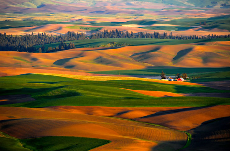 Palouse-Photo by RJAphotography