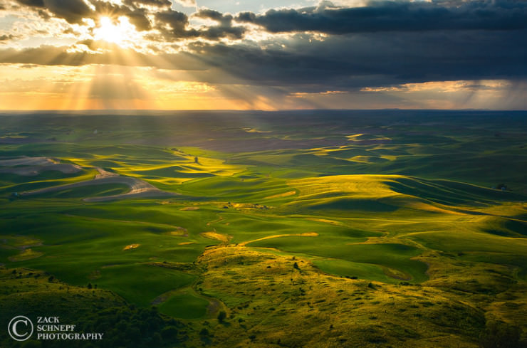 Palouse-Photo by Zack Schnepf