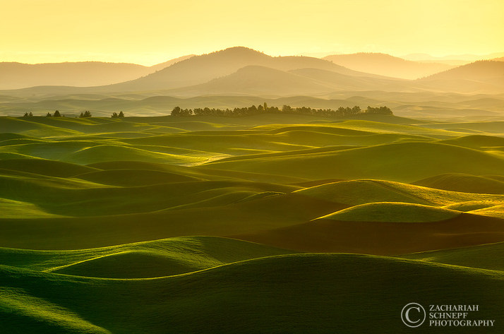 Palouse-Photo by Zack Schnepf2
