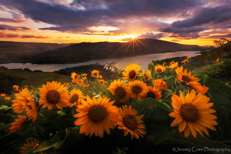 Top 10 Spring Destinations-Columbia-Photo by Jeremy Cram