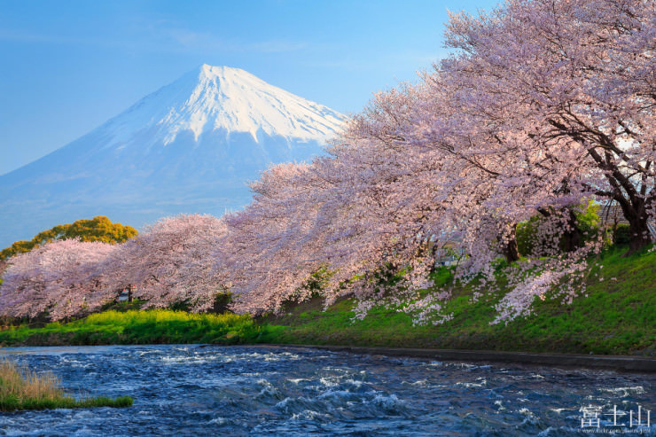 Top 10 Spring Destinations Places To See In Your Lifetime