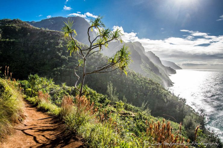 Top Things to See and Do in Hawaii-Kauai-Photo by Lazy Desperados