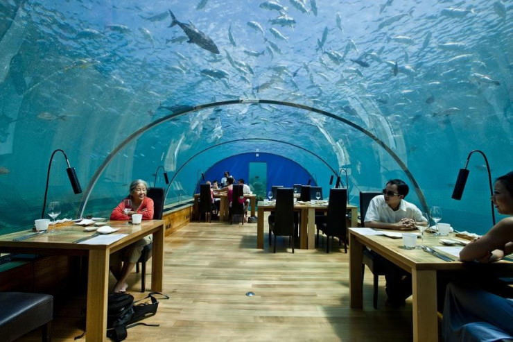 Ithaa one and only underwater restaurant in maldives for Hotel conrad restaurante bajo el mar