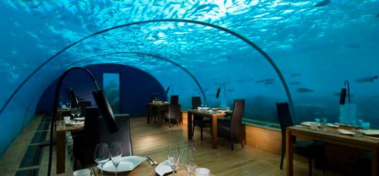 在马尔代夫唯一的水下餐厅