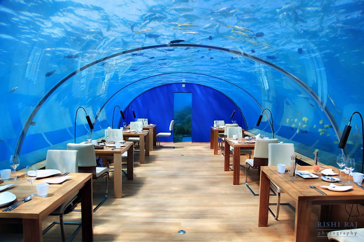 Ithaa one and only underwater restaurant in maldives for Conrad maldives rangali islands maldives