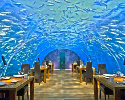 Ithaa – One and Only Underwater Restaurant in Maldives