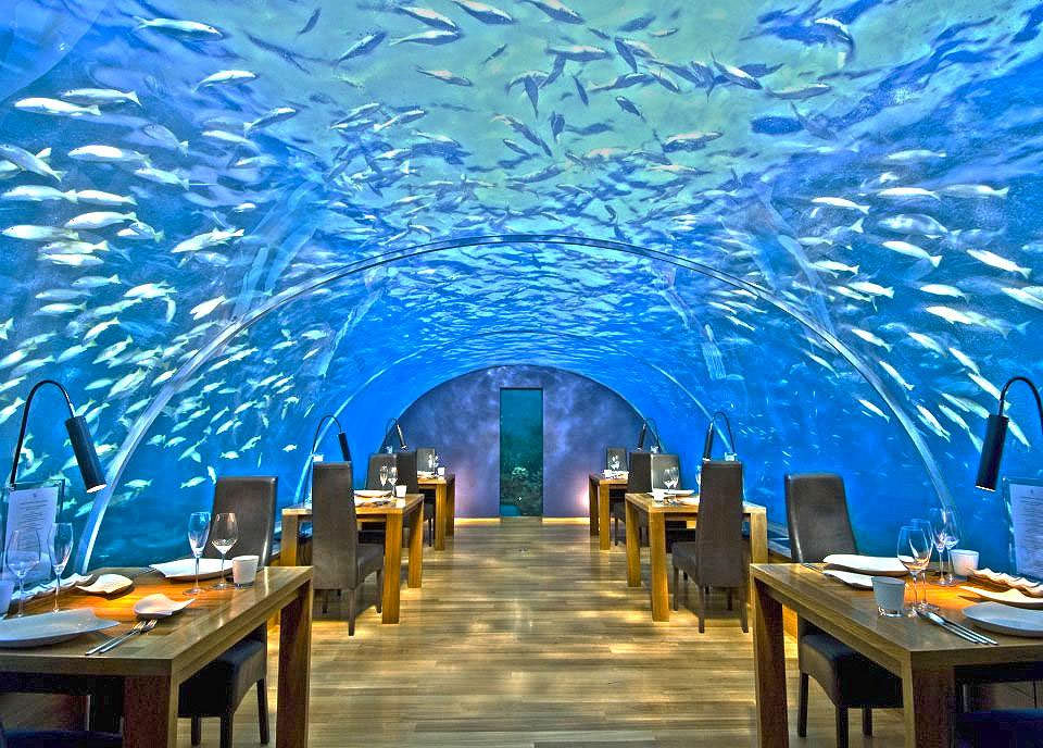 ithaa one and only underwater restaurant in maldives