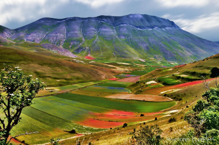 Top 10 Paragliding Sites-Castelluccio-Photo by Giuseppe Peppoloni