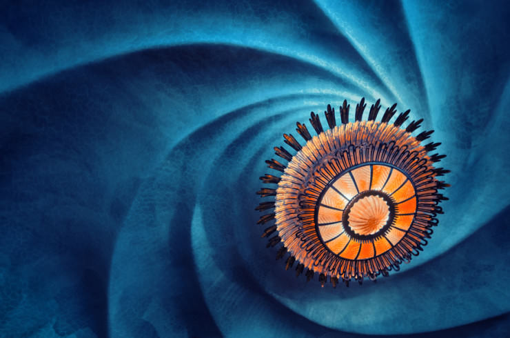 Top 10 Spiral-Casa Batlló