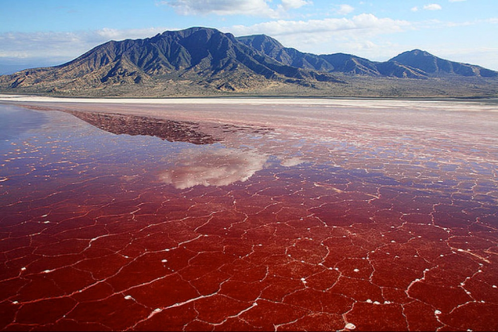 Dangerously Saline Red Lake Natron in Tanzania