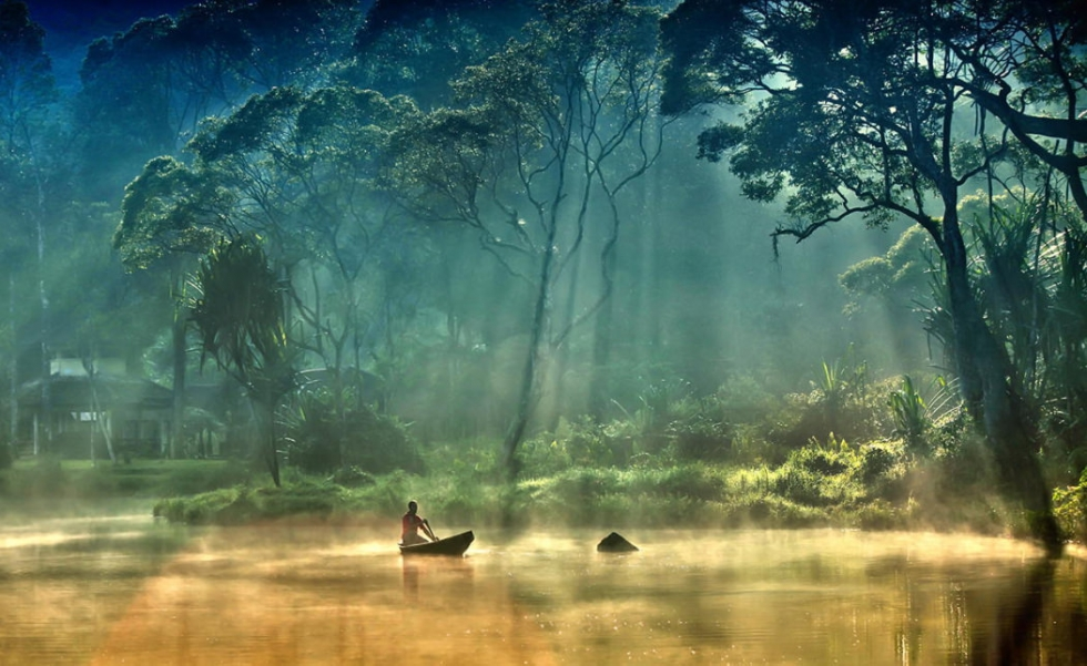Diverse Nature in Gunung Gede Pangrango National Park, Indonesia
