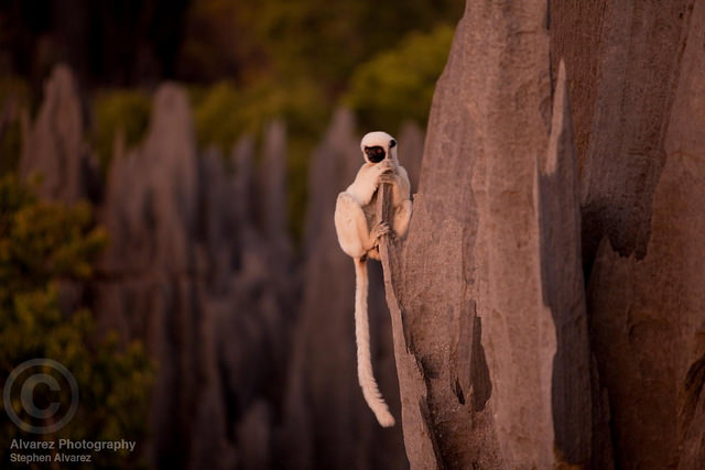 Top 10 Rock Formations-Tsingy-Photo by stephen alvarez (1)