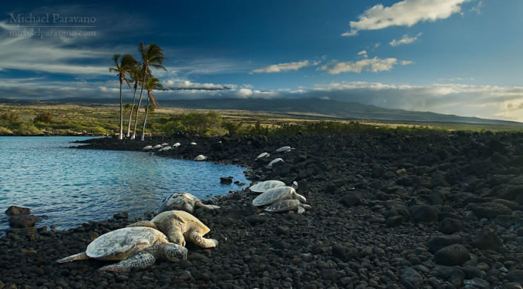 Top 10 Unusual Beaches-Hawaii-Photo by Michael Paravano2