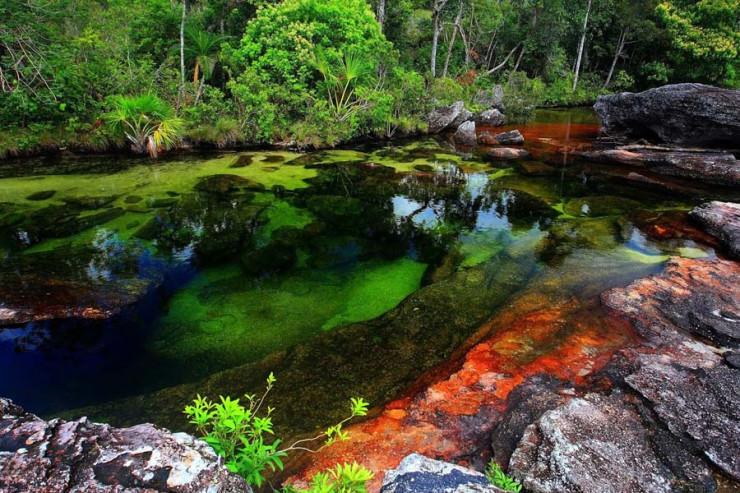 رودخانه پنج رنگ در کلمبیا