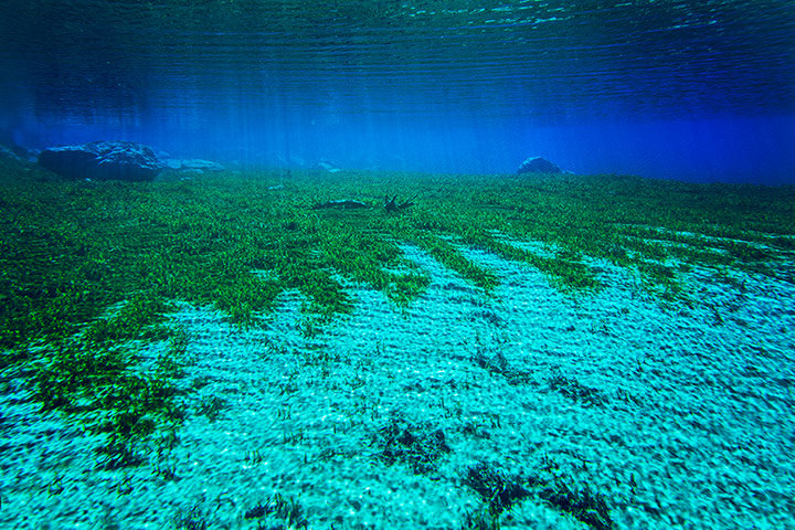Top 10 Clearest Waters-Blue Lake-Photo by Klaus Thymann (1)