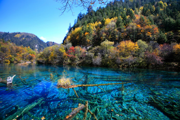 Top 10 Clearest Waters Places To See In Your Lifetime