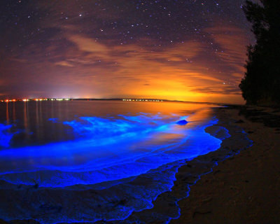 Pristine Beaches and Glowing Water in Jervis Bay, Australia