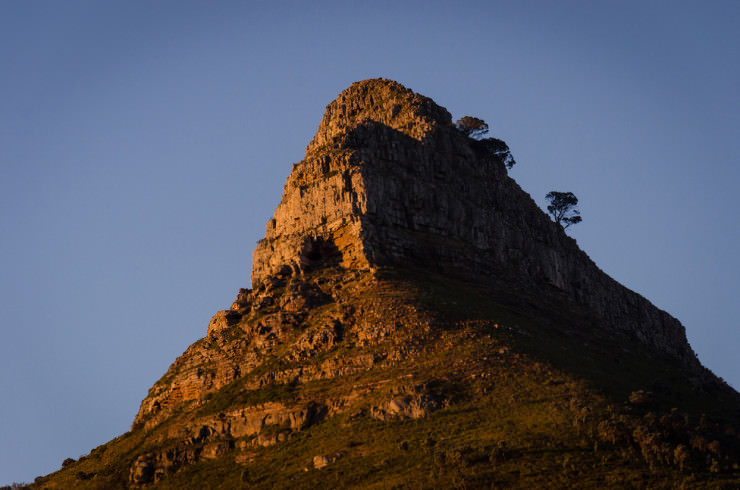 Lion's Head-Photo by Paul Indigo2