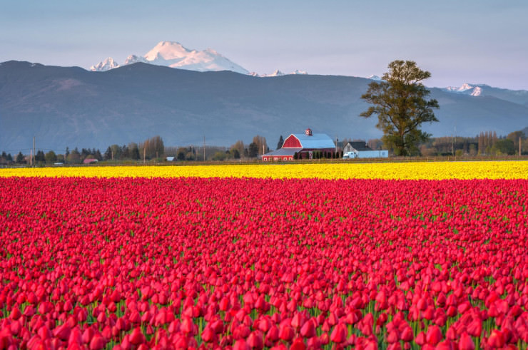 Top 10 Spring Destinations-Mt Baker-Photo by Ray Green