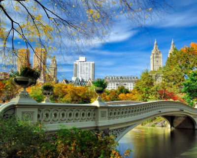 Top 10 Things to See and Do in Central Park, NYC