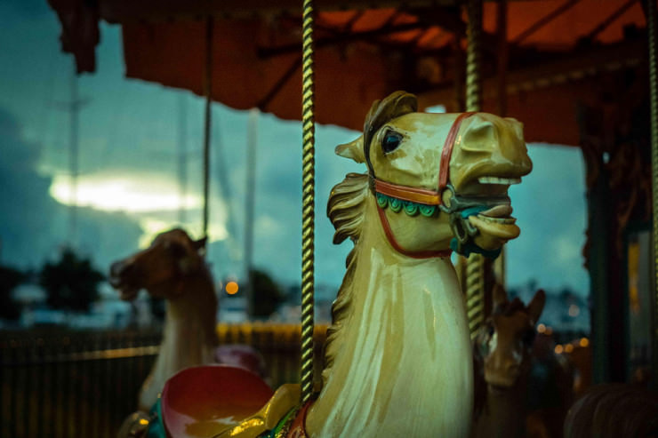 Top 10 Central Park-Carousel-Photo by Enning Tang