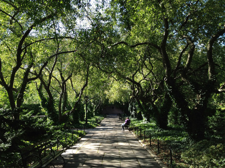 Top 10 Central Park-Conservatory3