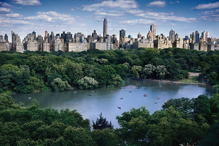 Top 10 Central Park-Great Lawn2