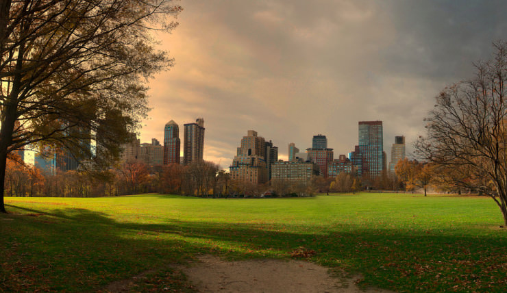 Top 10 Central Park-Great Lawn3