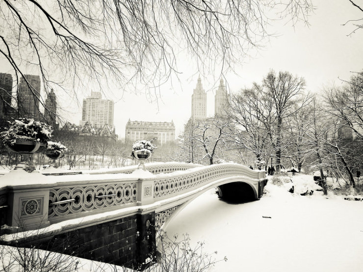 Top 10 Central Park-Photo by Vivienne Gucwa