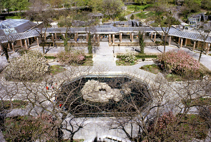 Top 10 Central Park-Zoo2