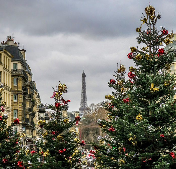Paris in Winter-Photo by David L Brown