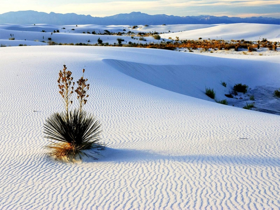 White Sands The Largest Gypsum Desert In The World USA Places - Largest desert in the world