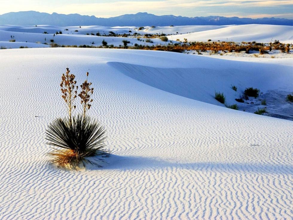 White-Sands-980x735.jpg