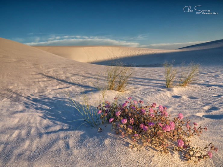 White Sands-Photo by Chris Sanner