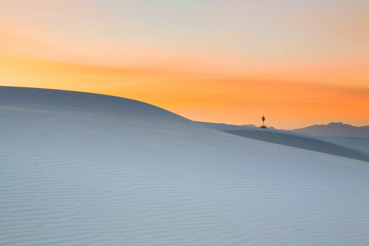 White Sands-Photo by Tom DiMatteo