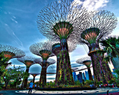 Top 10 Unexpected Oases to See in Your Lifetime