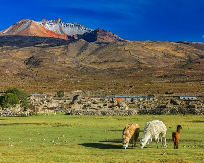 Visit Tunupa Volacano and its Fascinating Surroundings in Bolivia