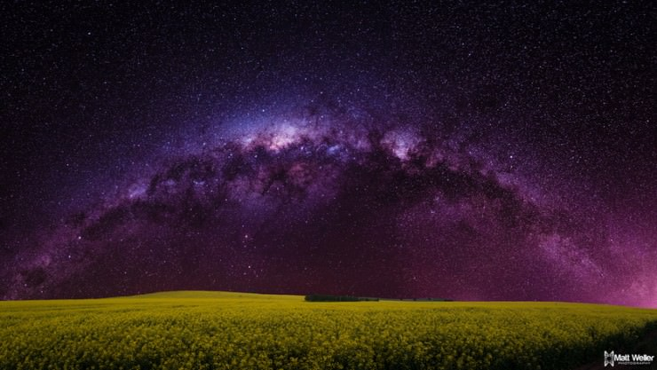 Top 10 Stars-Wiruna-Photo by Matt Weller