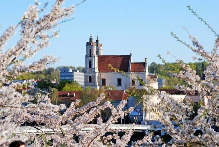 Top 10 Blossoming-Vilnius2